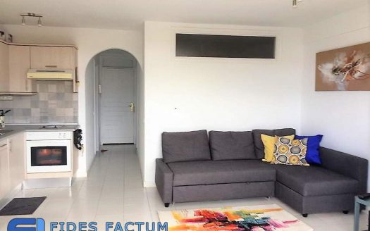 Apartment in the complex Flamingo in Palm Mar, Arona, Tenerife