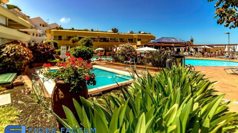 Apartment in the complex Santa Maria in Playa de Las Americas, Arona, Tenerife
