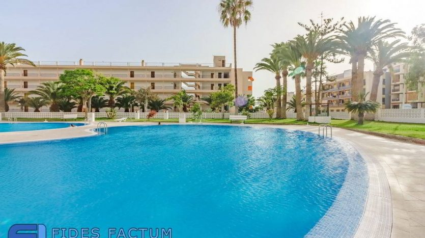 Apartment in the complex Achacay in Los Cristianos, Arona, Tenerife